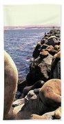 Sea Lions On Rock Pier Hand Towel