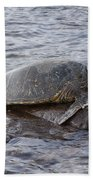 Sea Turtle On Rock Bath Towel