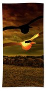 Seagull Flying In Action Hand Towel by Fernando Cruz