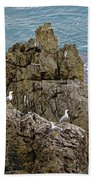 Seagull Island On Cefalu In Sicily  Bath Towel