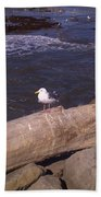 King Of The Seagulls Bath Towel