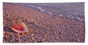 Seashell On The Beach, Lovers Key State Hand Towel