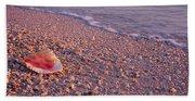 Seashell On The Beach, Lovers Key State Bath Towel