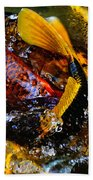 Secrets Of The Wild Koi 2 Bath Towel