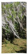 Seminole Wind Bath Towel