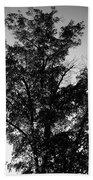 September Tree ... Bath Towel