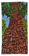 Sequoia National Park Hand Towel