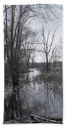 Serene Swampy River Bath Towel