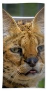 Serval Cat Bath Towel