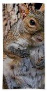 Sexy Squirrel Bath Towel