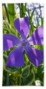 Shaded Greater Periwinkle Bath Towel