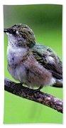 Shades Of Green - Ruby-throated Hummingbird Bath Towel