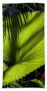 Shadow On A Ruffled Fan Palm Bath Towel