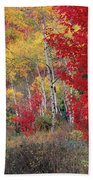 Sheep Canyon In Autumn Bath Towel