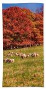 Sheep In The Autumn Meadow Bath Towel