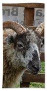 Sheep One Bath Towel