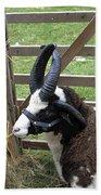 Sheep Three Bath Towel