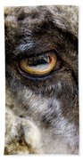 Sheep's Eye Bath Towel