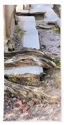 Sheldon Church Of South Carolina Bath Towel