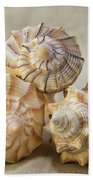 Shell Still Life Bath Towel