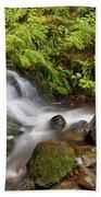 Shepperd's Dell Falls Bath Towel