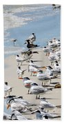 Shorebird Gathering Bath Towel