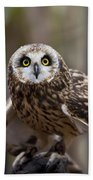 Short Eared Owl Bath Towel