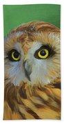 Short Eared Owl On Green Bath Towel