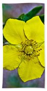 Shrubby Cinquefoil On Iron Creek Trail In Sawtooth National Wilderness Area-idaho  Bath Towel