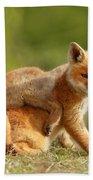Sibbling Love - Playing Fox Cubs Bath Towel