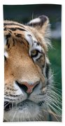 Siberian Tiger 2 Bath Towel