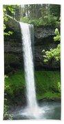 Silver Falls 1 Bath Towel