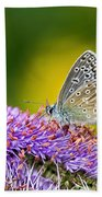 Silver-studded Blue Butterfly Bath Towel