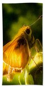Skipper Butterfly With Sun Shine Bath Towel