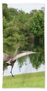 Skipping Sandhill Crane By Pond Bath Towel