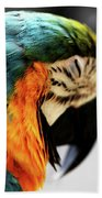 Sleeping Macaw Hand Towel