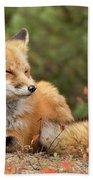Sleepy Fox Bath Towel