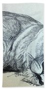 Slepping Lion Hand Towel