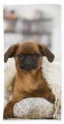Small Brabant Griffon, Petit Brabancon, Dog  Hand Towel