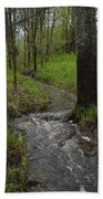 Small Stream In The Woods Bath Towel