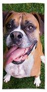 Smiling Boxer Dog Bath Towel