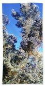 Smoke Tree In Bloom With Blue Purple Flowers Bath Towel
