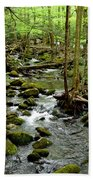 Smoky Mountain Stream 2 Bath Towel