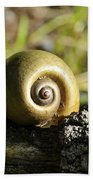 Snail Bath Towel