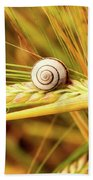 Snails On Wheat Bath Towel