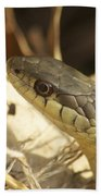 Snake Eye Bath Towel