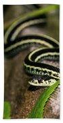 Snake Bath Towel