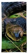 Snakehead Bath Towel