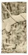 Snow Arch Bath Sheet by LeeAnn McLaneGoetz McLaneGoetzStudioLLCcom