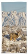 Snow-buck In Wyoming Hand Towel